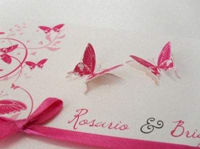 Un Bapteme Sur Le Theme Des Papillons